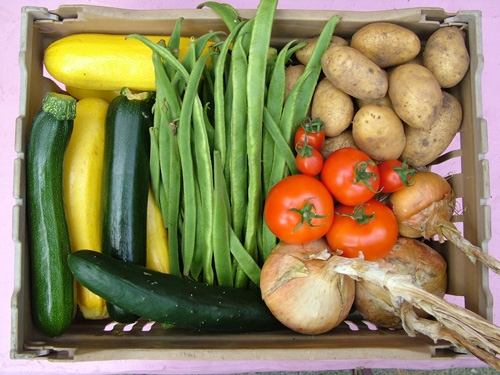 Our own veg box (500)