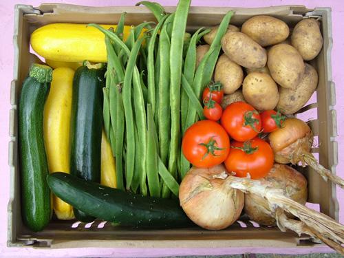 Our own veg box (500)